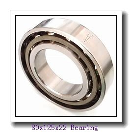 80 mm x 125 mm x 22 mm  NACHI 7016CDB angular contact ball bearings