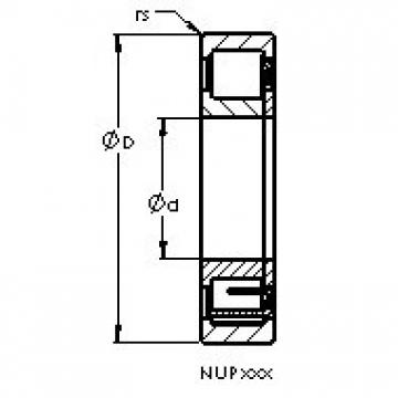 AST NUP306 ETN cylindrical roller bearings