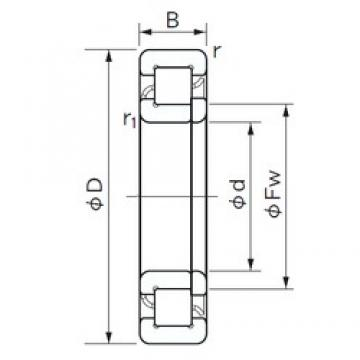 160 mm x 340 mm x 114 mm  NACHI NUP 2332 E cylindrical roller bearings