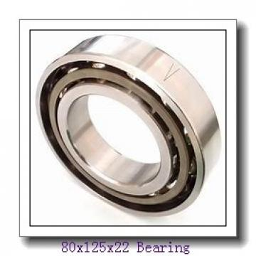 80 mm x 125 mm x 22 mm  ISO NU1016 cylindrical roller bearings
